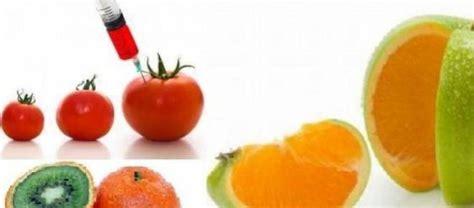 definicion de alimentos transgenicos alimentos transg 233 nicos y sus efectos nocivos