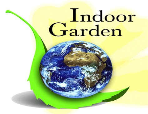 indoor garden kent indoor garden and lighting kent wa hydroponic grow shops