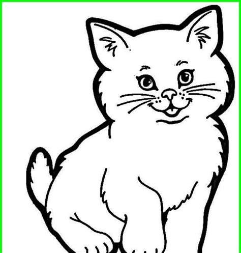 gambar hitam putih kucing koleksi populer
