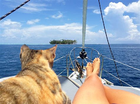 living on a boat with cat woman quits her job and sails around the world with her