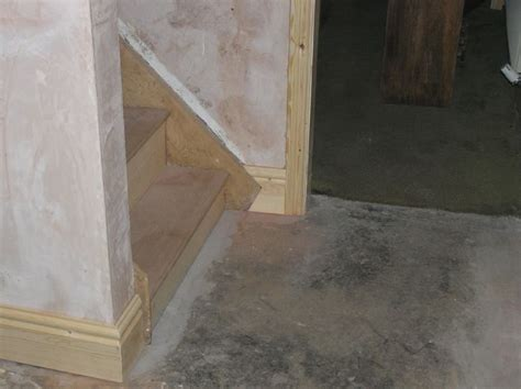 Damp proofing rising damp, Wet Rot, Dry Rot, Woodworm
