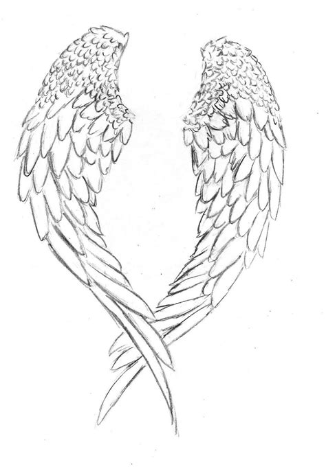 coloring pages of angels wings angel wing coloring page coloring home