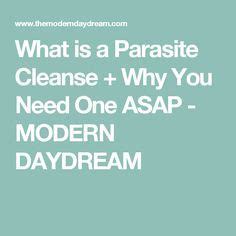 Paraites Move To Avoid Detox by 1000 Ideas About Parasite Cleanse On Remedies