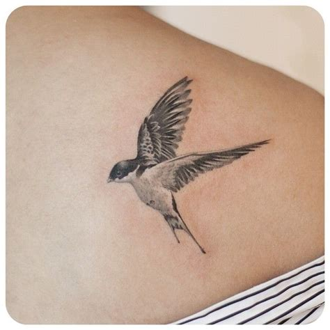 swallow bird tattoo designs 25 best ideas on bird