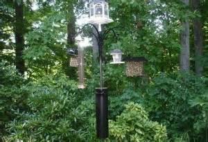 finding a squirrel deterrent for bird feeders effective