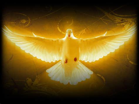 The Holy Spirit 12 february 2017 the holy spirit empowers us to prosper