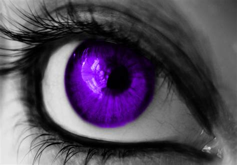 purple eye color 35 breathtaking pictures of creativefan