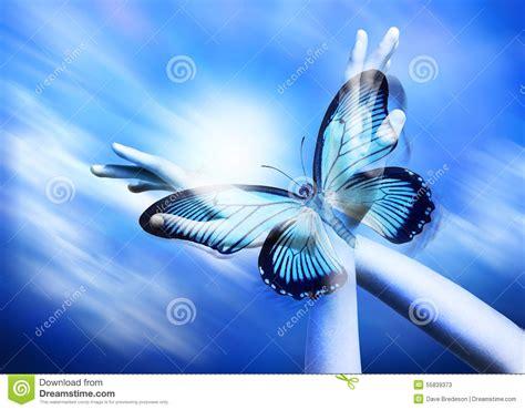 imagenes de mariposas espirituales ailes de papillon de main de spiritualit 233 image stock