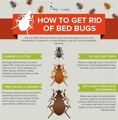 bedbugs symptoms  treatment  diagnosis findatopdoc