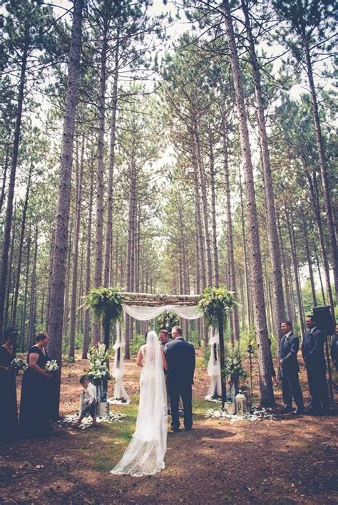 birch arch tree grove outdoor wedding wisconsin romantic