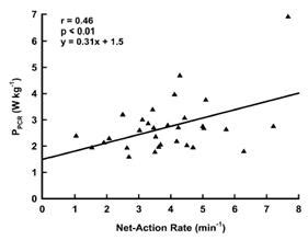 pattern of energy expenditure during simulated competition meccanismi energetici nel karate