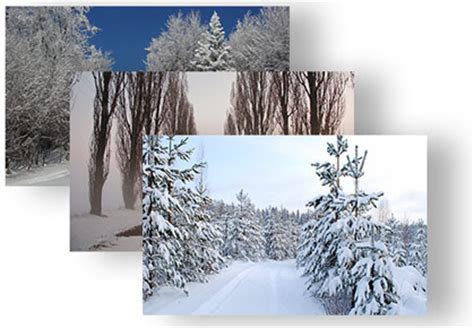 winter themes for windows 8 1 winter theme for windows 8 8 1