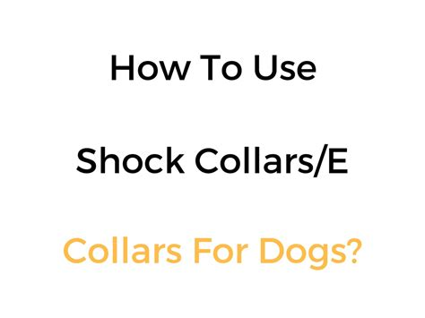 how to use a collar on a how to use a shock collar e collar for dogs