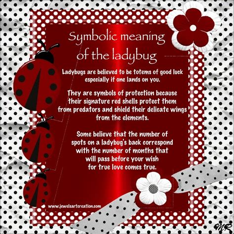 symbolizes meaning ladybug poems or quotes quotesgram
