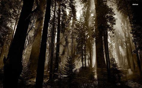 mystical quotes  nature quotesgram