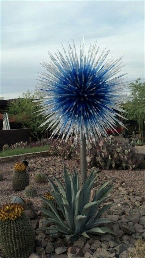 Phoenix Desert Botanical Garden Beautiful Flowers Botanical Gardens Phx