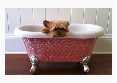 dogs in a bathtub position ultra luxe holiday presents for truly pered and