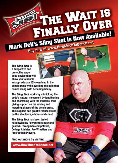 slingshot bench press band sling shot bench press band