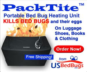does alcohol kill bed bug eggs bed bugs how to kill bedbugs with alcohol