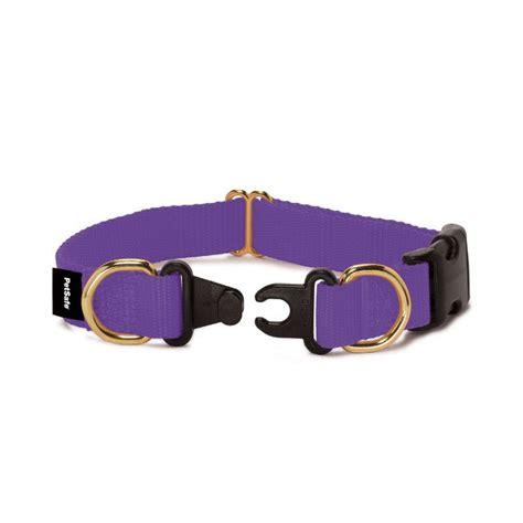 breakaway collar heck of a bunch collar safety awareness week away collar giveaway
