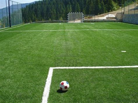 soccer backyard 17 best images about backyard soccer fields on pinterest