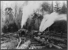 Neils, Julius Neils Logging Camp History