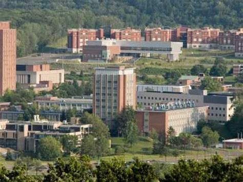 Binghamton Mba Tuition by Binghamton