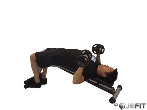 exercises with a bench dumbbell decline bench press exercise database jefit