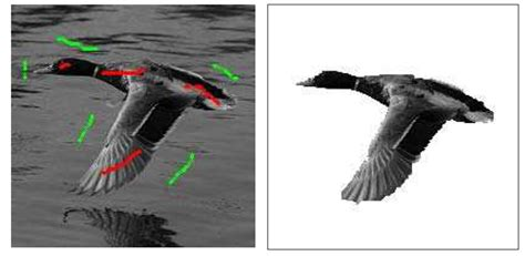 pattern recognition olga veksler bo peng olga veksler