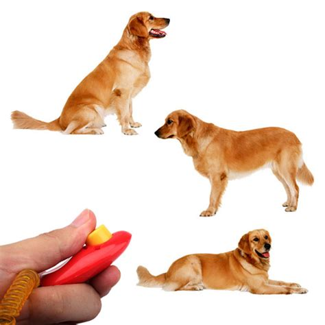 clicker dogs sell arrival pet aid click clicker trainer aid portable wristband