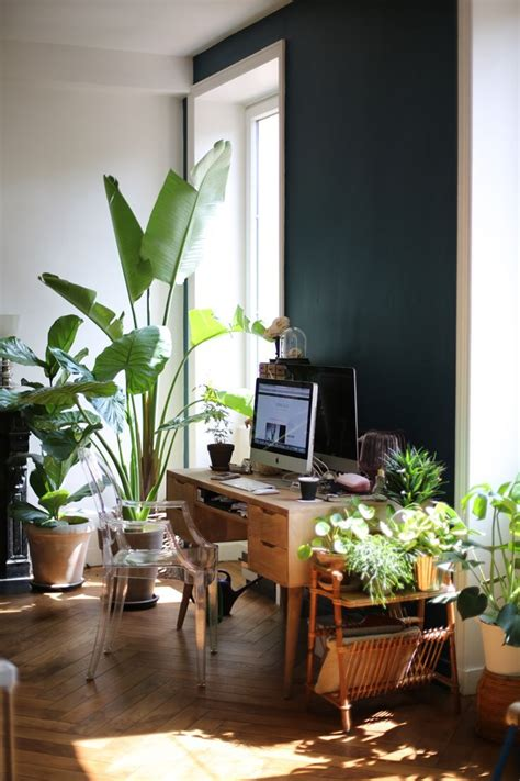 best plants for dark rooms plant filled workspace with mid century desk best indoor