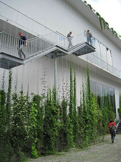 fabulous vertical garden cameras and accessories