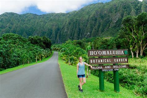 Botanical Gardens Oahu Botanical Gardens Oahu