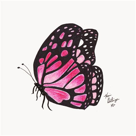 pink drawing the gallery for gt pink butterfly drawing
