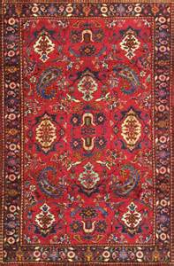 how to clean or shoo and area rugs and