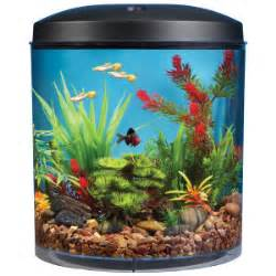 Aquarium Kaca Ukuran 60x30x35 Ketebalan Kaca 5mm tips buat aquarium bimbingan
