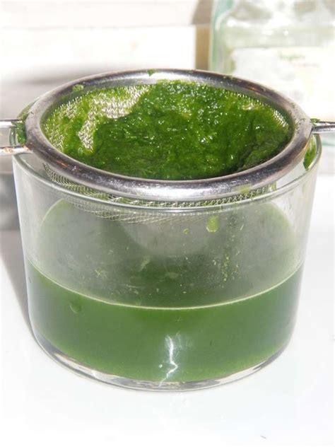 sal de cocina sal de cilantro receta cocina y aficiones