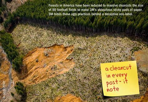 exposed  sourcing  forest destruction