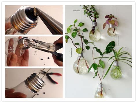 Light Bulb Planter Diy by How To Make Diy Light Bulb Planter Diy Tag