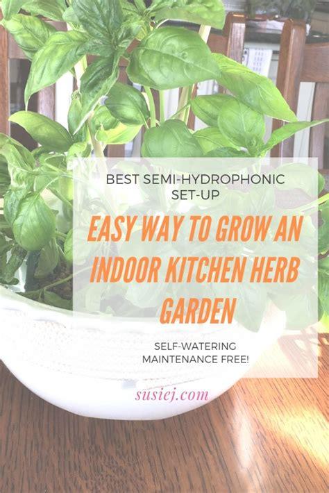 easy   grow  indoor kitchen herb garden