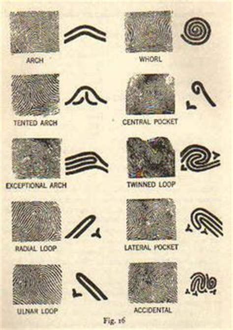 fingerprint pattern classification pdf process and instrumentation symbols equipment to play