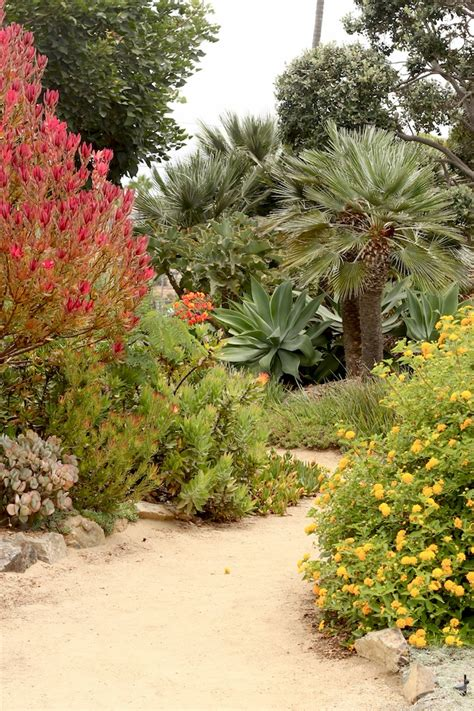 Encinitas Meditation Garden by A Meditation Garden In Encinitas Socal D