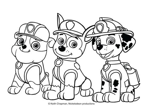coloring pages paw patrol rocky paw patrol coloring pages paw patrol coloring pages in