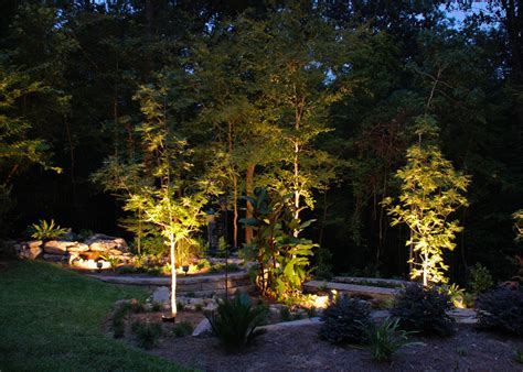 Landscape Tree Lighting Outdoor Tree Lighting Fixtures Tree Lighting Expert Outdoor Lighting Advice Outdoor Lighting