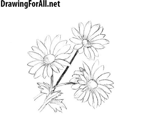 how to draw doodle flowers how to draw flowers drawingforall net