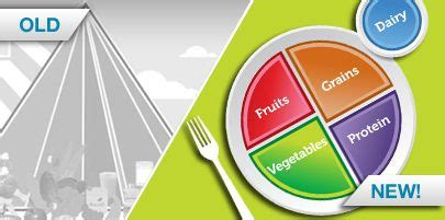 healthy fats quiz 1000 images about lunch and learn ideas on