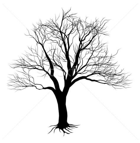 Twig Putih arbre 183 silhouette 183 effrayant 183 noir 183 texture 183 bois