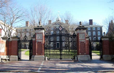 Brown Mba by Brown Wickle Gates Flickr Photo