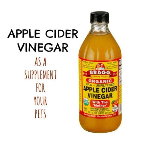 can dogs vinegar 17 best images about pet health on cats apple cider vinegar and vitamin d