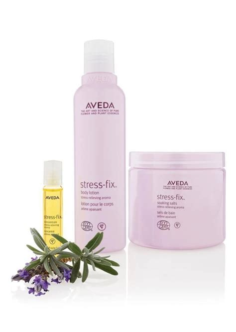 Envirometal Cosmetics From Aveda by Best 25 Aveda Products Ideas On Aveda Hair